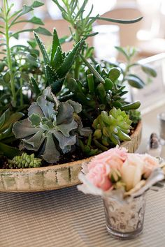 Could I do something like this (succulents) with the cake stand I have and surround with smaller floral arrangements and candles?
