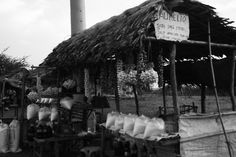 Roadside stores (Ilocos Norte): They sell (as you can see on the photo) bundles and more bundles of garlic, onions, salt and spiced vinegar. Ilocos, Onions, Vinegar, Garlic, Salt, Canning, Norte, Salts, Onion