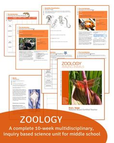 Hands-on, inquiry based zoology curriculum for middle school students by Eva Varga
