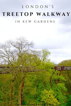 One of London's most unique attractions, that most people don't even know about! Escape to the treetops of Kew Garden for a thrilling experience and view of the London skyline! Click for more about Kew Gardens!