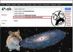 I Hate it When my Chinchilla Eats the Universe Funny Shit, Crazy Funny Memes, Really Funny Memes, Funny Puns, Stupid Memes, Funny Relatable Memes, Haha Funny, Hilarious, Funny Stuff