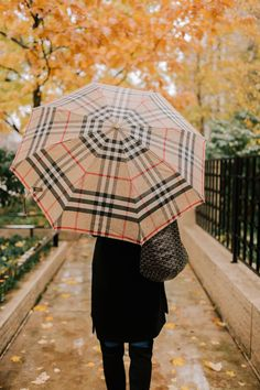 867521eec 53 Best Classic Umbrella images in 2017 | Rainy days, Rain days ...