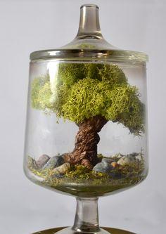 Tree terrarium, miniature landscape terrarium- Tree Sculpture, real moss, glass terrarium