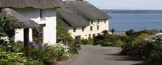 Atlantic House Bed & Breakfast, Lizard, Helston, Cornwall.  England, Holiday, Breakfast, Countryside, Explore, Beaches, Coast, Seals, Basking Sharks, Penguins, Choughs, Cream Tea.