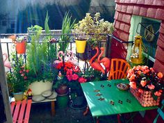 I must have this on MY porch! Kitschy vignette with pink lawn flamingos and garden gnomes on an apartment's balcony. Fun substitute for real grassy outdoor space.