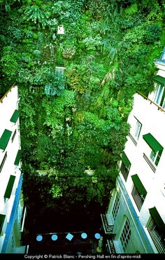 """""""In any city, all over the world, a naked wall can be turned into a Vertical Garden and thus be a valuable shelter for biodiversity. It's also a way to add nature to the daily life of city inhabitants""""    ~ Patrick Blanc"""