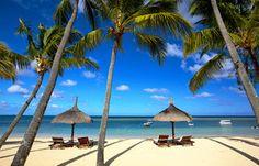 Tropical beach by dibrova. White sand beach and palm trees in Mauritius Mauritius Hotels, Win A Holiday, Going On Holiday, November Holiday Destinations, Bora Bora Activities, Vietnam, Bora Bora Honeymoon, Lanai Island, Thailand