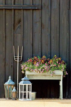 Fall Container Gardening Ideas: Pink Petunia Window Box