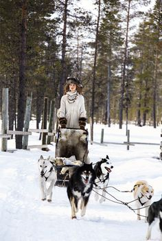 The Fall 2015 Ralph Lauren Collection campaign was captured in Finland , in the Kakslauttanen Arctic Resort chosen for its natural beauty and light. Alaska, Jimmy Nelson, Husky, Snow Bunnies, Ski Fashion, Winter Fashion, Ralph Lauren Collection, Arctic, Winter Wonderland