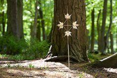 Maple Sun Diamond | Flickr - Photo Sharing!