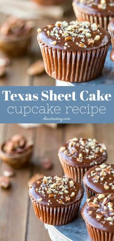 Texas Sheet Cake Cupcake Recipe Texas Sheet Cake Cupcakes are light and fluffy chocolate cupcakes topped with a rich fudge frosting. Fudge Frosting, Cupcake Frosting, Cupcake Cookies, Frost Cupcakes, Lemon Cupcakes, Strawberry Cupcakes, Köstliche Desserts, Delicious Desserts, Dessert Recipes