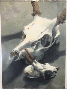 Original Deer Skulls  STILL LIFE OIL Painting Deer Skulls, Cow Skull, Still Life Oil Painting, Abstract Portrait, Natural Forms, Skull And Bones, Priority Mail, Art Paintings, Stability