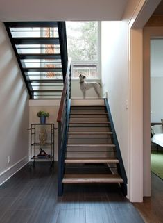 Basement stairs - There is no shortage of stairway design ideas to make your stairway a charming part of your home. Open Basement Stairs, Open Stairs, Basement Ideas, Attic Stairs, Attic Ladder, Attic Window, Floating Stairs, Traditional Staircase, Modern Staircase
