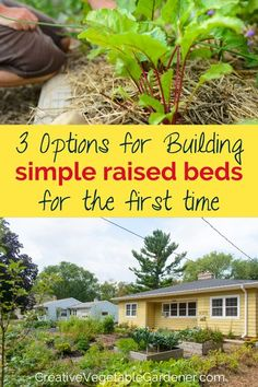 Learn three options for building an easy raised garden bed with lots of before and after photos of the design and installation process. #vegetablegarden #gardening #gardendesign #moderngarden Gardening For Dummies, Gardening Tips, Raised Garden Beds, Raised Bed, Natural Pesticides, Vegetable Garden Tips, Best Perennials, Diy Garden Furniture, Flower Garden Design