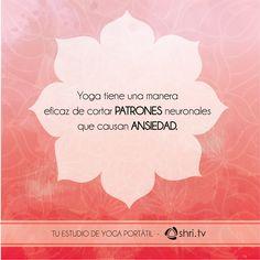 La comodidad de hacer yoga desde Internet: