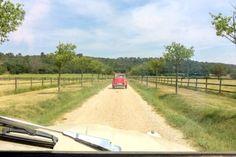 3 Ente Citroen 2CV Auto Südfrankreich Frankreich