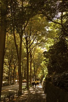 Tucked just off a leafy road running through Nishi-Azabu's Hiroo Garden Hills complex is the Garden Hills Studio branch of Fitness Club Hiroo, where first-time visitors can get a free demonstration. But beware of the delicious bakeries and restaurants that line the streets.