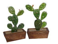 Silvia Fuganti - Arte en Vidrio -: Cactus Vitrofusión