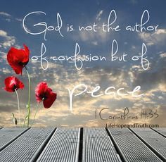 1 Corinthians 14:33 ~ God is not the author of confusion but of peace...