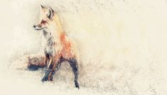 We are in the process of experimenting with Photoshop actions. This is our take on a geometric fox in the snow.