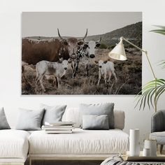 """Some people collect souvenirs when they travel, I prefer to collect beautiful images, and I hope to add more to my collection over the next few years along my travels. I seek to photograph images that excite and inspire me.  Own a piece of Africa, and browse through my series of Nguni Images from the """"Sacred Herd Series"""""""