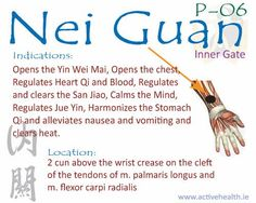 Nei Guan P-06 | Active Health Foundation