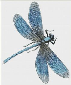 Blue Dragonfly Cross Stitch Pattern Instant by NeedleAndFloss                                                                                                                                                                                 More