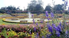Mughal Gardens in Rashtrapati Bhavan, New Delhi, India New Delhi, Delhi India, Dolores Park, Gardens, Spaces, Travel, Life, Goa India, Viajes