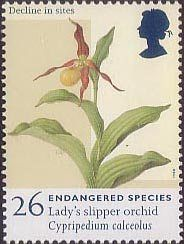 Endangered Species 26p Stamp (1998) Lady's Slipper Orchid  More about collecting stamps : http://sammler.com/stamps/