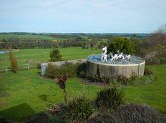 Photo of Apostle Whey Cheese Online Tickets, Trip Advisor, Melbourne, Golf Courses, Ocean, Cheese, Yum Yum, Photos