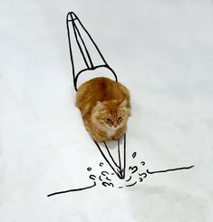 Wanna Become A Good Swimmer? Just Follow My Lead (entire collection of drawings of this cat doing stuff)
