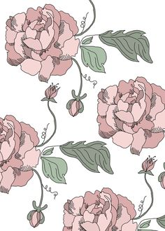 'Peonie Print' - the first of a new collection of prints I am working on! Victoria Illustrates copywright 2013 #illustration #print #floral #peonie #flowers #victoriaillustrates