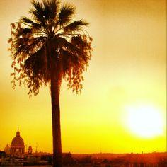 Shining Rome