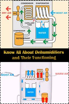 Eager to know all about dehumidifiers, right from different types of dehumidifiers to purchasing costs? Atmospheric Water Generator, Mini Circular Saw, Refrigeration And Air Conditioning, Hvac Maintenance, Water From Air, Secret Hiding Places, Air Fan, Dehumidifiers, Heating Systems