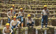 La minería responsable es un proceso técnico y científico. ¡Conozca su ciclo! facebook.com/AGAColombia