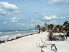 7 Florida Beaches Locals Want to Keep Secret - Caladesi Island