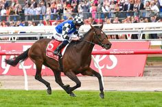 MELBOURNE, July 1 AAP - Kris Lees is optimistic about Melbourne Cup winner Protectionist returning to his best this spring as he prepares for another Cup campaign.