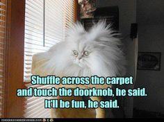 """""""Shuffle across the carpet and tough the doorknob,"""" he said. """"It'll be fun,"""" he said."""