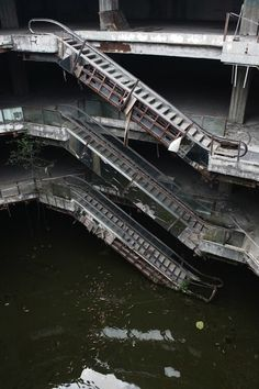 Oh, just an Abandoned Shopping Mall turned Giant Fish Pond