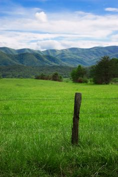 Cades Cove - Smoky Mountains National Park.  My favorite place on earth.
