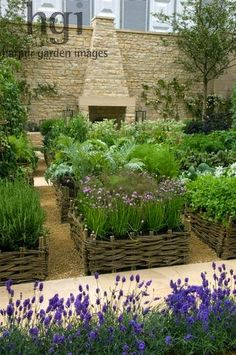 Potager and herb garden raised beds borders edged by wicker natural kitchen crop harvest