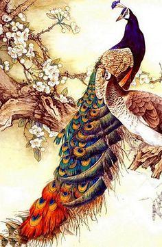 Vintage Japanese Peacock Painting