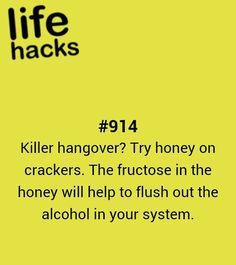 crackers, diy, hangover, honey, recipe, tips, hacks, 1000 life hacks Simple Life Hacks, Useful Life Hacks, Cheers, 1000 Lifehacks, Making Life Easier, The More You Know, Favim, Helpful Hints, Handy Tips