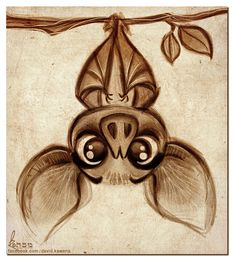 Seriously the cutest bat I've ever seen!! Would love this as a tattoo!!!! Doodles by David Kawena, via Behance