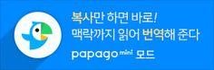 파파고 미니 모드 광고