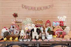 Festa Fazendinha - decoração