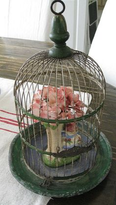 Antique Birdcage:  love decorating with birdcages using plants, candles, pictures, lights etc.
