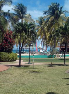 Beautiful garden in Antigua - close to the beach, rooms, and volleyball court.