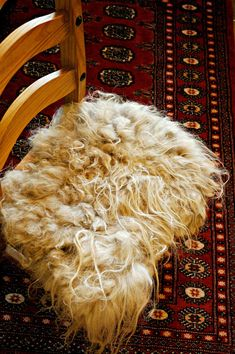 Navajo Churro felted chair pad. Looks like a sheepskin... but it's felt.