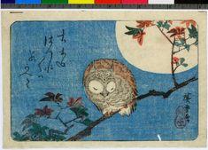 Colour woodblock print. Sleeping owl on branch against full moon ~ Utagawa Hiroshige (歌川広重)